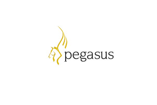 Pegasus software Ltd