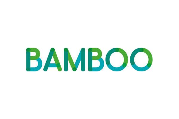 Bamboo Loans