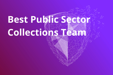 Best Public Sector Collections Team